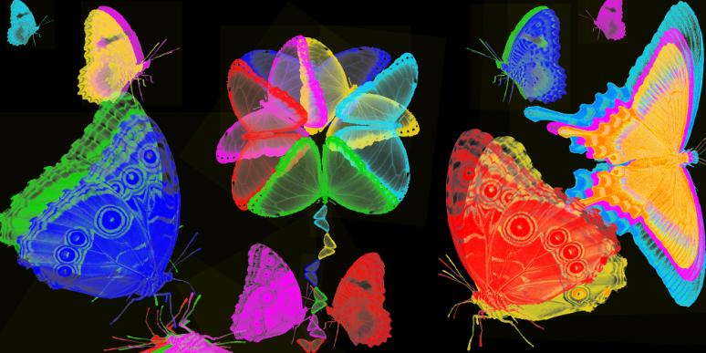 Papillons Sous-Marins